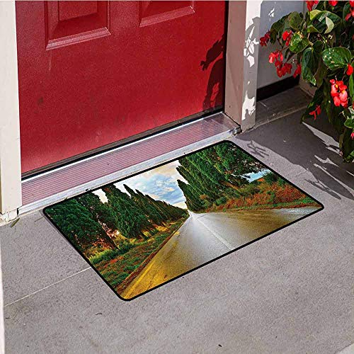 Jinguizi Italian Commercial Grade Entrance mat Boulevard with Trees Old European Village Country Life Destination Artistic Photo for entrances garages patios W47.2 x L60 Inch Multicolor