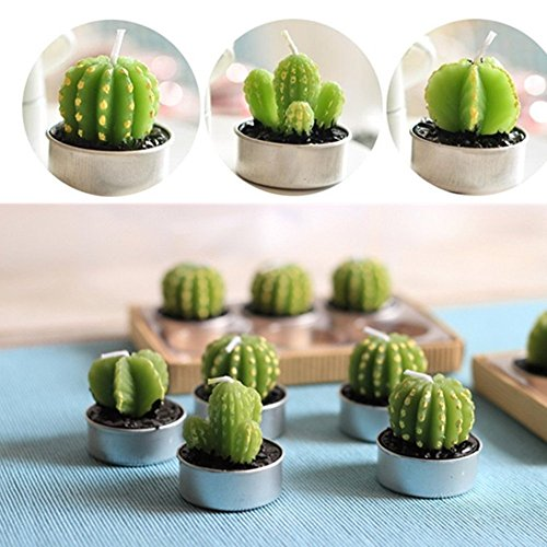 UUsave 12 Pcs Cactus Tealight Candles Decor Handmade Delicate Succulent  Cactus Candles for Valentine's day Birthday Party Wedding Spa Living Room  Home