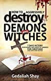 How to Aggressively Destroy Demons and Witches: 7