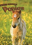 Ponies, Heather C. Hudak, 1590364260