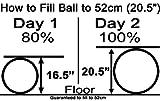 Isokinetics Inc. Brand Adjustable Fitness Ball