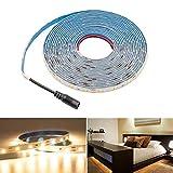 HitLights Guirnalda de luces LED azul flexible, 300ledes, 5metros, Uso en exteriores, Blanco Warm