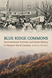 Blue Ridge Commons: Environmental Activism and Forest History in Western North Carolina (Environmental History and the American South Ser.)
