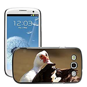 Hot Style Cell Phone PC Hard Case Cover // M00129971 Muscovy Wart Duck Duck Bird // Samsung Galaxy S3 S III SIII i9300
