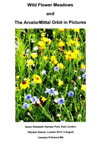 wild-flower-meadows-and-the-arcelormittal-orbit-in-pictures-photo-albums-afrikaans-edition