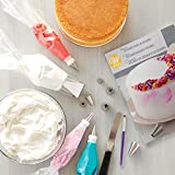 Wilton How to Decorate Cakes and Desserts Kit