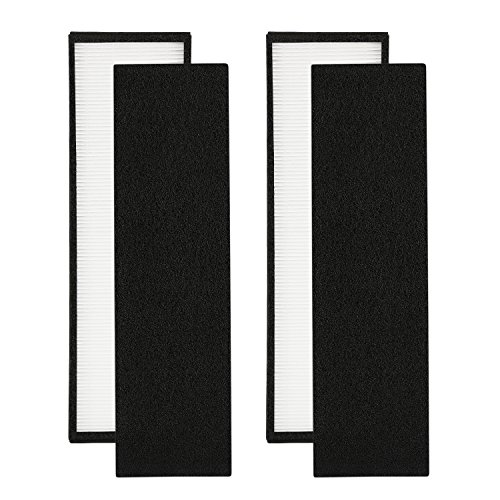 2-Pack FLT4825 True HEPA Air Purifier Filter B Replacement Compatible for GermGuardian Models AC4825 AC4850PT AC4900CA PureGuardian AP2200CA Plus 8 Carcon Filter