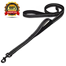Maxpower Planet Dog Leash 6ft Long with Traffic Padded Handle, Heavy Duty, Double Handle Lead for Greater Control Safety Training, Perfect for Large or Medium Dog, Dual Handles Black