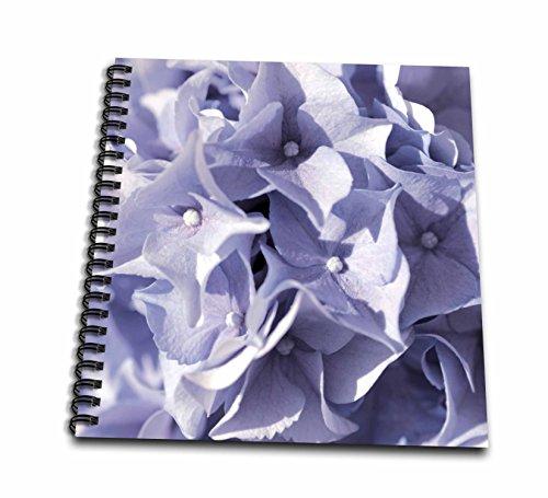 hotography Flowers - Blue Floral Hydrangea Pattern - Drawing Book 8 x 8 inch (db_255574_1) (Blue Hydrangea Sticker)