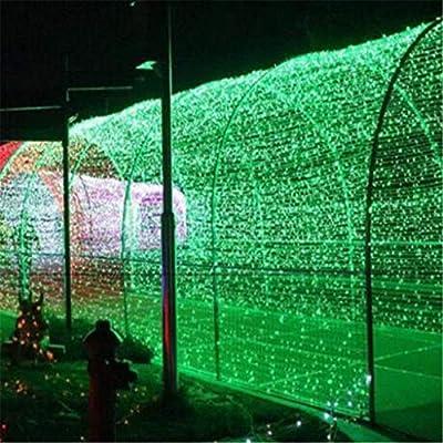 w.p. Luz Neta De Vacaciones, Decoración De Jardín, Luz LED, Luz De Red De Pesca, Estándar Europeo 220V, Luz De Navidad, Impermeable Al Aire Libre, Luz Verde 2 * 2 m144LED: Amazon.es: Hogar