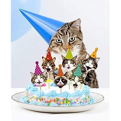 LaVenty Set of 24 Glittery Kitten Cat Meow Cupcake Toppers Cat Cupcake Topper Meow Cupcake Toppers Girl's Birthday Kitten theme Party Decorations Kids' Birthday Party Decors: Toys & Games