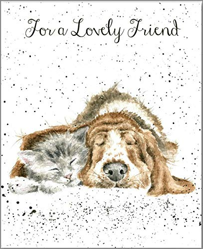 """Greetings Card ~ Blank/Birthday ~ """"For a Lovely Friend ~ Dog and Cat"""" ~ Get Well Soon ~ New House ~ Thank You ~ New Job ~ All Items Dispatched Same Day ~ Royal Mail ~ When Purchased Before 1pm Mon - Fri ~ Only with Hugo Destiny… Wrendale Designs"""