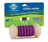 Petsafe Busy Buddy Nobbly Nubbly Dog Toy, Large, My Pet Supplies