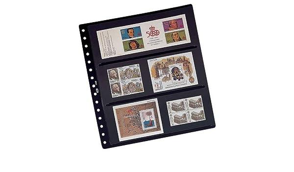 Pardo 100300 - Pack de 10 fundas, 6 alojamientos por hoja, 270x295mm, transparente: Amazon.es: Oficina y papelería