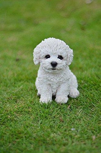 - Pet Pals - Sitting Bichon Frise Puppy Statue