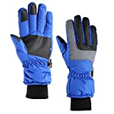 Fazitrip 3M Thinsulate Men's Ski Gloves /Winter Gloves/Sport Gloves with Sensitive Touchscreen Function, Ideafor Skiing, Snowboarding and Cycling (Blue, M)