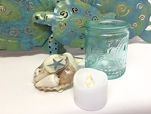 3 Piece Sea Turtle Metal Wall Sculpture Set Home Decor Tea Light Flameless Candle Glass Fleur di Lis Candle Holder Sea Shell Starfish Scallop Blue Beach Bathroom Decor Accents 7 Piece Bundle