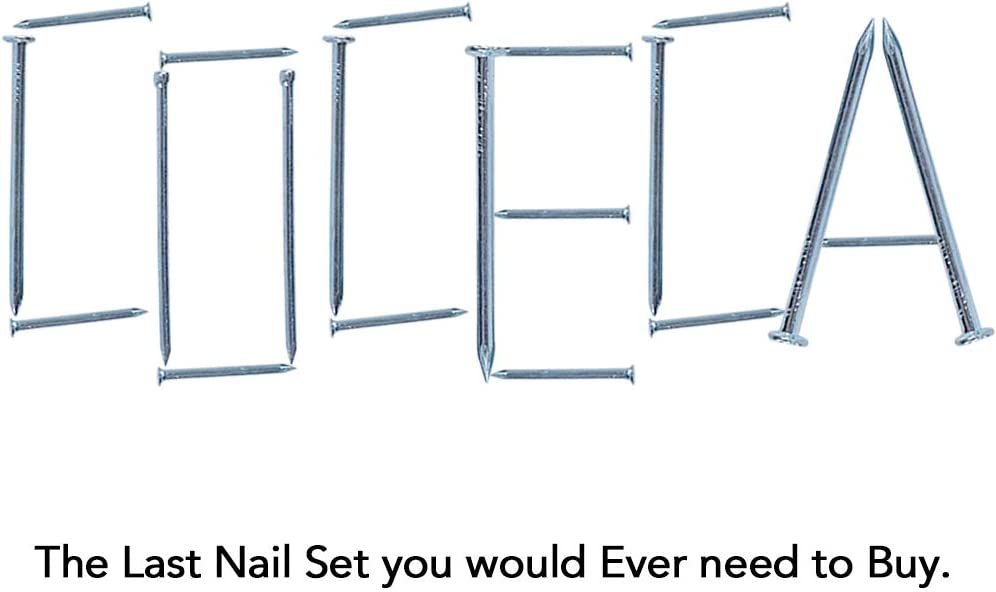 Coceca Hardware Nail Assortment Kit 200pcs, Galvanized Nails, 4 Size Assortment - -