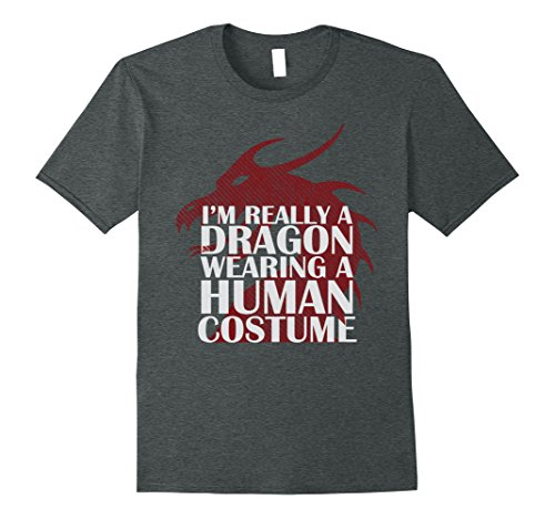 Mens I'm Really a Dragon Wearing a Human Costume Funny T-Shirt XL Dark (A Human Costume)