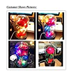 Beauty-and-The-Beast-RoseEnchanted-Red-Silk-Rose-Lamp-That-Lasts-Forever-with-LED-Fairy-String-LightsFallen-Petals-and-ABS-Base-in-A-Glass-DomeBest-Gift-for-Her