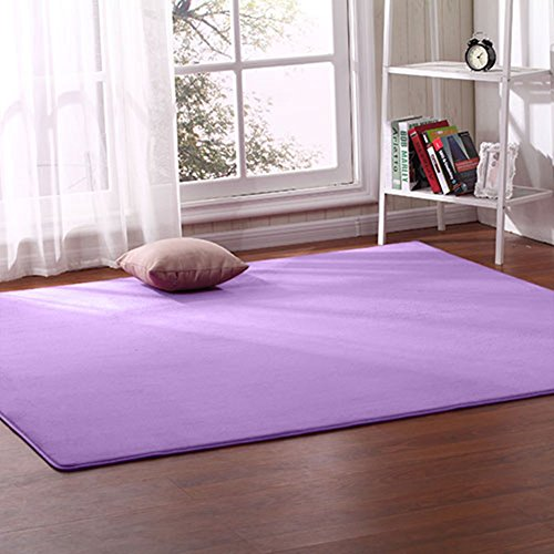 Lyfreen 1CM Thickness Children Play Mat 31.4 by 78.7 inch Ultra Soft Play Crawling Rugs for Baby Coral Velvet Living Room Rug Children Play Blanket, Yoga Mat, Exercise Mat by Lyfreen
