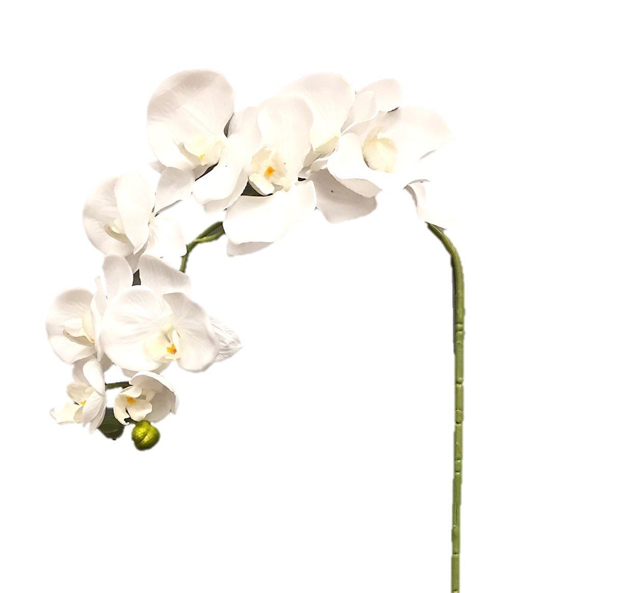 """silk flower arrangements silk flower garden 2 pcs artificial butterfly orchid spray 38"""", white"""