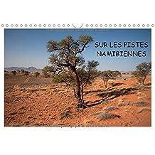Sur les pistes namibiennes 2016: A la decouverte de la Namibie