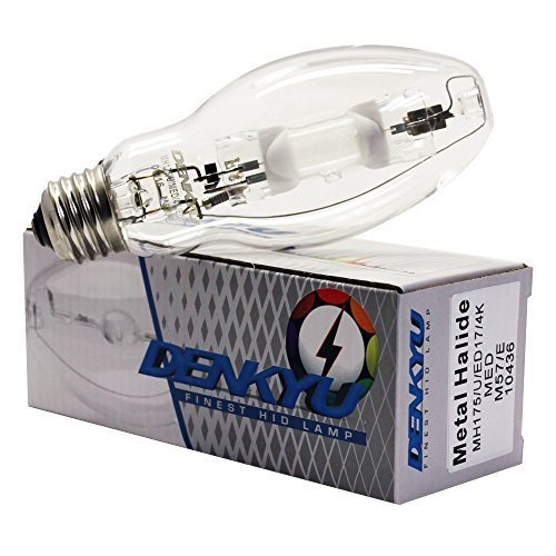 (12) MH175/U/4K/ED17 MH175 Metal Halide Lamp (10436) by Denkyu Lighting