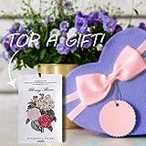 MYARO 12 Packs Lavender Scented Sachets for