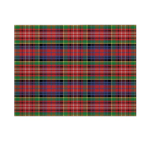 Red Plaid Photography Background,Scottish Traditional Skirt Pattern Tartan Motif Abstract Squares Ornate Quilt Decorative Backdrop for Studio,15x10ft