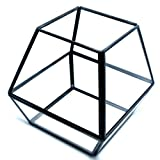 Cheap Cvens Clear Glass Terrariums,Geometric Terrariums,Geometric Air plants terrarium,Succulent planters,Artficial Plants Air Plant Geometric Terrariums Holder for Tabletop Succulent Plants Holder