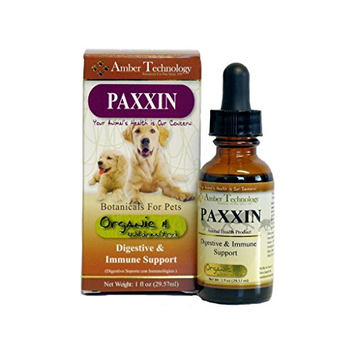 Image of Amber Technology Paxxin Digestive & Immune Support for Dogs, 1 oz