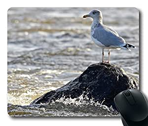 Herring Gull Mouse Pad Desktop Laptop Mousepads Comfortable Office Mouse Pad Mat Cute Gaming Mouse Pad