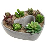 Cheap Cut Out Heart Shaped Design Gray Cement Outdoor Plant Pot Flower Planter / Decorative Centerpiece Bowl