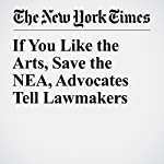 If You Like the Arts, Save the NEA, Advocates Tell Lawmakers | Katie Rogers