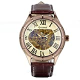 Avaner Mens Classic Skeleton Automatic Watch Self Winding Mechanical Wristwatch with Brown Leather Strap