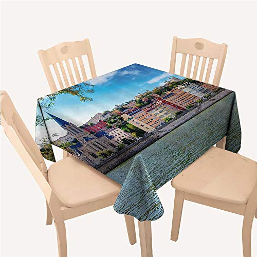 WilliamsDecor European Clear Tablecloth Lyon City Village France with Colorful Historical Cathedral by River PanoramaMulticolor Square tablecloths W50 xL50 inch -