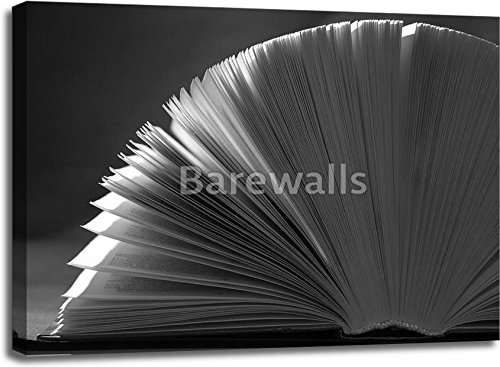 Book Background. Gallery Wrapped Canvas Art (30 in. x 40 in.) by barewalls