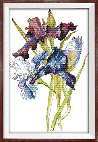 CaptainCrafts Hot New DIY Art Cross Stitch Kits Patterns Nee