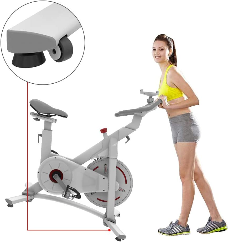 ATIVAFIT Indoor Cycling Bike Magnetic/Resistance System Stationary Exercise Bike with Tablet Holder and LCD Monitor for Home Workout