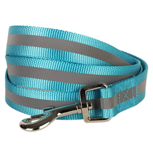 Blueberry Pet 3/4-Inch by 5-Feet Reflective Dog Lead, Medium, Turquoise