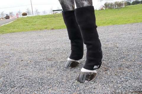 Ice Horse Pair of Knee to Ankle Wraps for Equine Therapy - Comes with 12 Ice Packs by Ice Horse (Image #2)