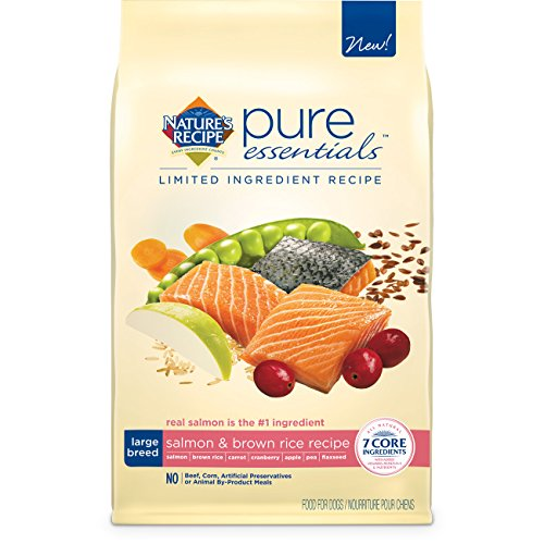Nature's Recipe Pure Essentials Large Breed Salmon and Brown Rice Dry Dog Food, 24-Pound