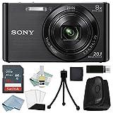 Sony DSC-W830 Digital Camera Black Bundle (16GB)