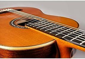 Cordoba C12 SP Limited una cuerda de nailon acústica guitarra ...