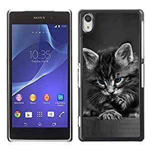 Design for Girls Plastic Cover Case FOR Sony Xperia Z2 Cute Paw Kitten Whiskers Grey Baby Cat OBBA