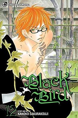 About Black Bird Manga Volume 12