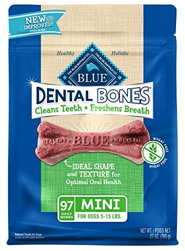 10 Best Blue Tooths