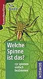 Welche Spinne ist das?: 132 Spinnen einfach bestimmen. Basic