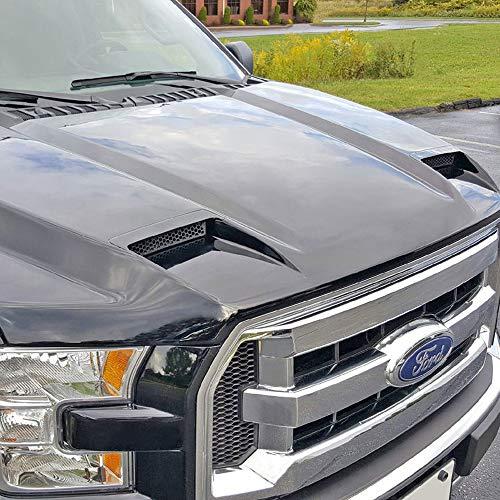(Dawn Enterprises RAHF15015 Ram Air Hood Compatible with Ford F-150 - INGOT SILVER)